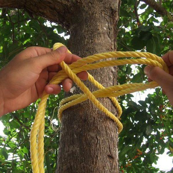 noeud pour attacher un hamac a un arbre